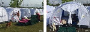 益城町総合体育館芝生広場の災害用避難テント