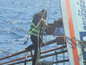 ネコ4匹を沈没船から救う。かっこよすぎるタイ海軍の救出劇