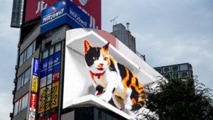 東京に出現した3Dの猫看板がとにかくすごい。