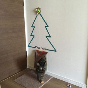 ペットドアを幹に見立ててクリスマスツリー