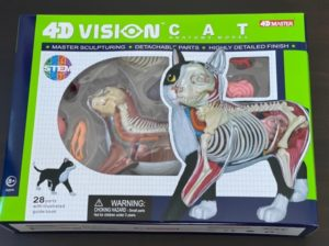 「4D VISION 動物解剖モデル 猫解剖モデル 黒/白」